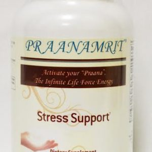 Stress Support Front